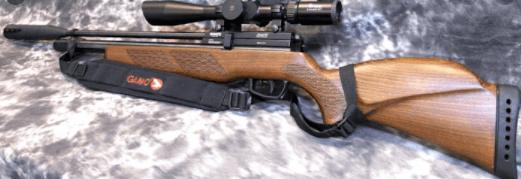 Gamo Coyote Whisper Fusion PCP Air Rifle