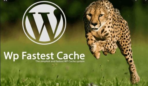 WP Fastest Cache Website Optimization Tool